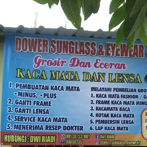 Dower Sunglass Dan Eyewear