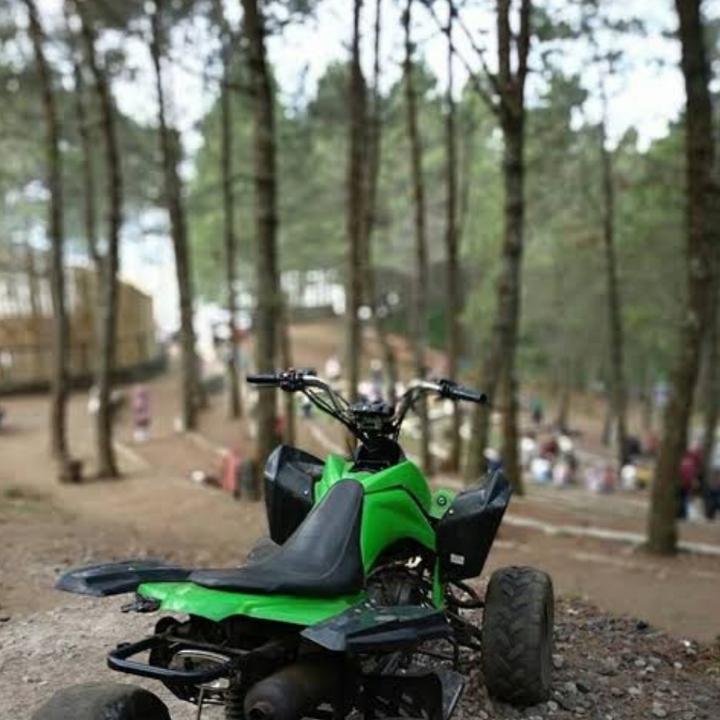 Kamojang Ecopark  4