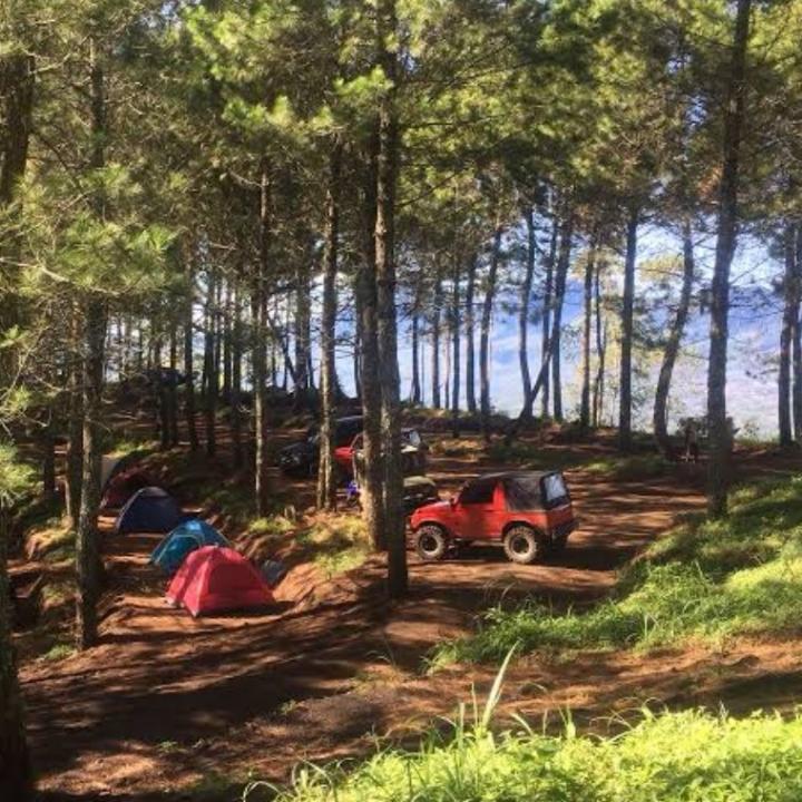 Kamojang Ecopark  5