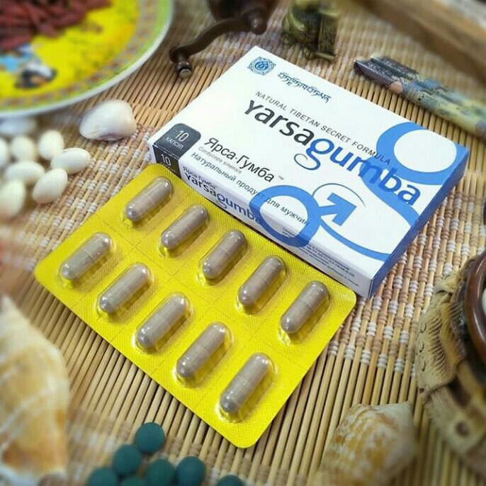 Jamur Yarsagumba Asli Obat Kuat Herbal Viagra Tibet Himalaya