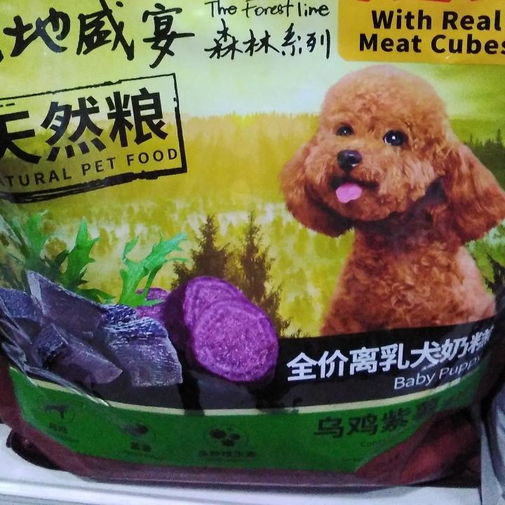 Kitchen Flavour Baby Dog