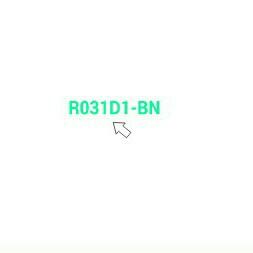 R031D1-BN